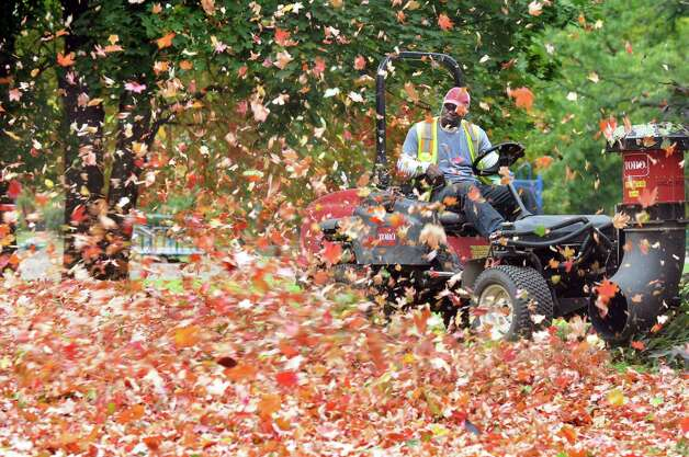 Mack Lawson of the Department of General Services blows leaves into a pile on Wednesday, Oct. 15, 2014, at Washington Park in Albany, N.Y. Lawson said he loves seeing children play in the leaves and doesn't mind when they mess up the piles he makes. (Cindy Schultz / Times Union) Photo: Cindy Schultz
