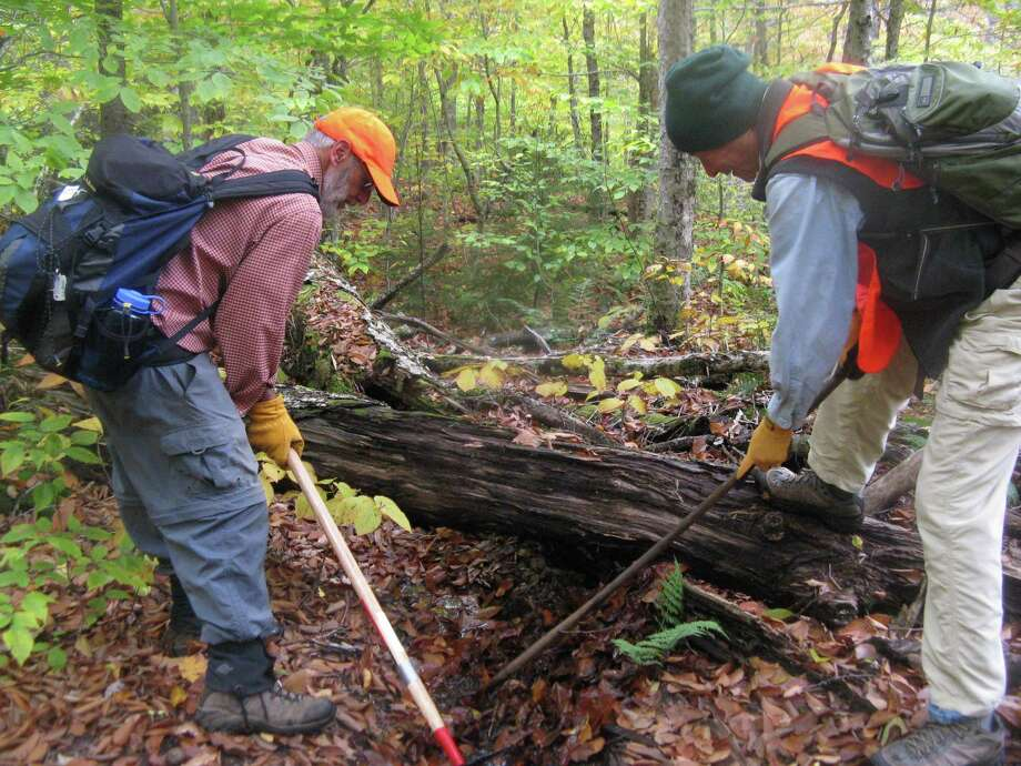 Roy Keats and Richard Wang use hoes to clean leaves from a water bar on the Northville-Placid Trail during a recent volunteer outing with the Schenectady chapter of the Adirondack Mountain Club. (Gillian Scott / Times Union)