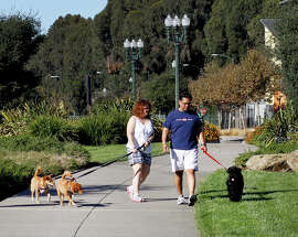 Two dog lovers take a walk on the popular Mandela Parkway greenbelt in Oakland. An online dating service uses a love for dogs as something potential partners have in common.