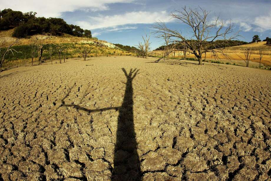 Sunrise creates a shadow of a lone tree on the arid Lake San Antonio lakebed in Bradley, Calif., in September 2014. The once 16-mile lake in Monterey County now reaches less than five miles. Another dry year is leaving California's farmers in an ever-tighter bind, and the dairy industry is hit particularly hard. (Allen J. Schaben/Los Angeles Times/MCT) Photo: Allen J. Schaben / McClatchy-Tribune News Service / Los Angeles Times