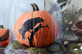 Painted Raven Pumpkin     Download, print, and cut out our  bird  or  feather  template; then trace the out-line onto a pumpkin. Next, use a fine-tip brush to fill in with black flat acrylic paint, let dry, and display with moss inside a glass cloche.     RELATED:  6 Bird-Themed Halloween Crafts          8 Color Rules To Follow For A Brighter, Happier Home   101 Living Rooms You'll Love   46 Ways To Make Something New Out Of Something Old   The Most Impressive Tiny Houses You've Ever Seen   53 Classic Homemade Cake Recipes   10 Creative DIY Coffee Tables