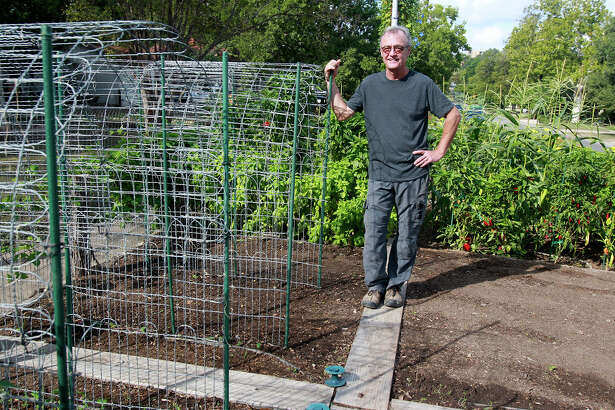 Paul Sartory created arches from sections of wire fencung materal (left) to grow vining vegetables such as cucumbers and sugar snap peas. It keeps the plants from rambling across the garden, and it keeps the produce clean.