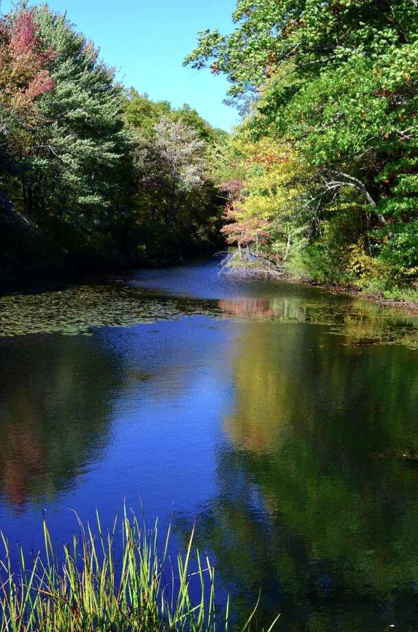 """Sweet Serenity  Susan TenEyck captures the brilliant color contracts of fall during a ride around the lakes in her hometown. This photo was taken near Crooked Lake off Eastern Union Turnpike in Averill Park. """"I'm just an amateur photographer who loves the fall season.  I?m inspired by the beauty of nature, and love to photograph reflections of fall leaves in the many lakes and streams in our area,"""" she says.    (Susan TenEyck)"""