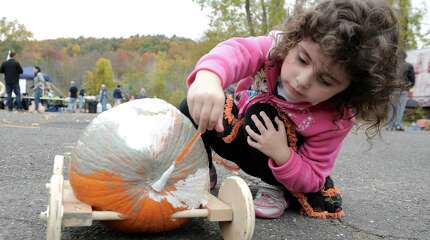 Sophia Cannato, 5, of Massachusetts, formally of newtown, returned for the 3rd year in a row to compete in the 5th Annual Great Pumpkin Race, on Saturday, October 18, 2014. The race is sponsored by the Newtown Lions Club, and was held behind Edmond Town Hall, in Newtown, Conn. Cannato took 1st place in the pumpkin decorating contest in the scariest division. She is painting her entry for the race.
