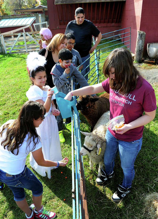 Student Emily Cullen, right, helps the kids feed two sheep, during the Halloween Family Festival at the Trumbull Agriscience Center in Trumbull, Conn. on Saturday October 18, 2014. Families got to take part in a variety of fun activities like a haunted house, visit with the center's animals, a tractor ride, to name just a few. Photo: Christian Abraham / Connecticut Post