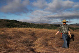 John Wick walks through invasive weeds before covering the area with compost on his Nicasio ranch.