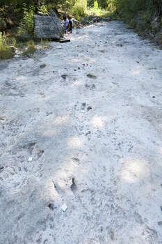 Dinosaur tracks on the upper trackway were marked with 2-inch square white tiles on the sixth day of work at Government Canyon State Natural Area on Thursday, Aug. 14, 2014.  MARVIN PFEIFFER/ mpfeiffer@express-news.net Photo: MARVIN PFEIFFER, File / Express-News 2014