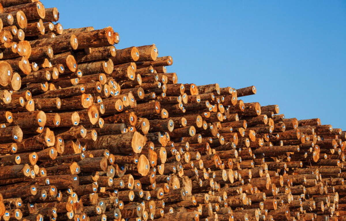 23. The Collins family, owners of a forest products company Owns 310,472 acresSource: Business Insider