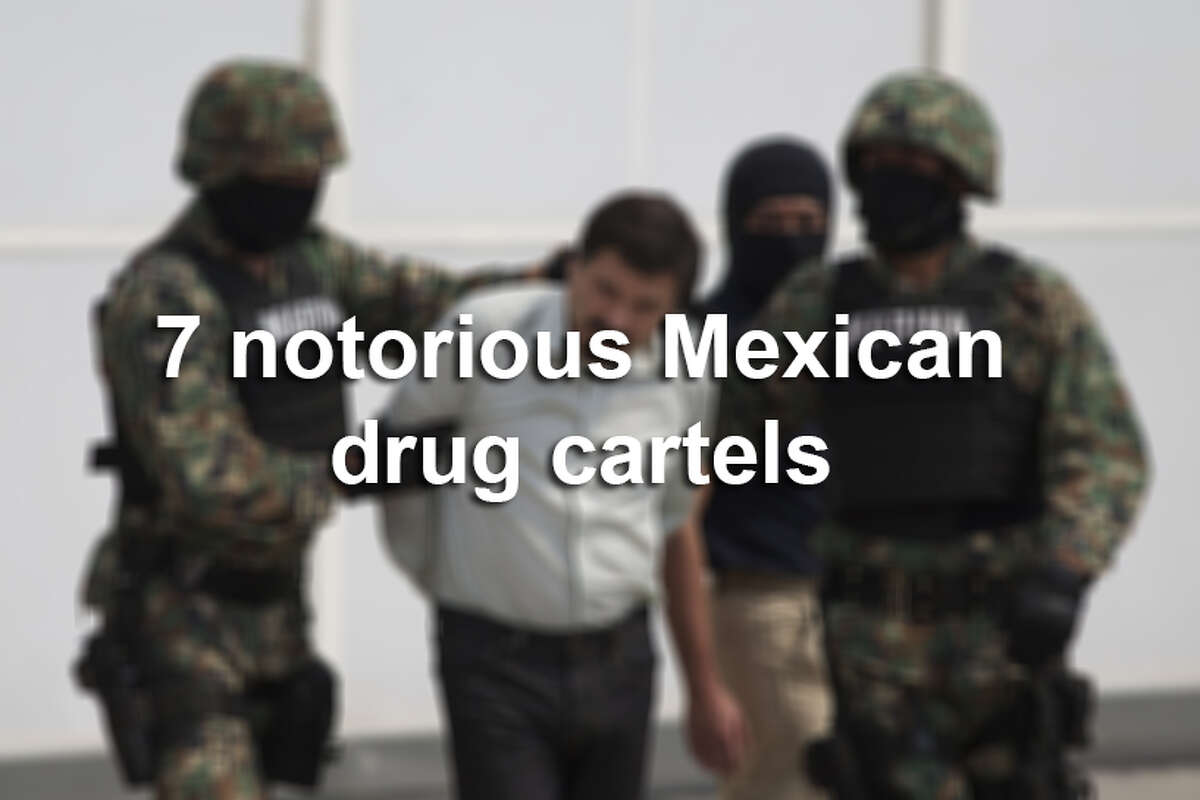 Here are seven of Mexico's most notorious drug cartels.
