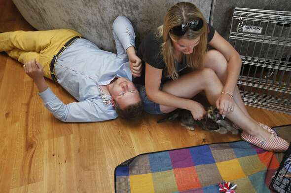 "Alistair, 28, and Lizzy Crane, 28, play with their new puppy Winston July 10, 2014 in their apartment in the Mission in San Francisco, Calif. The Cranes moved to San Francisco from London less than a week after getting married in April. Alistair Crane co-founded a mobile app company in London and it was sold in September 2013 for millions of dollars. Crane took a job opportunity with the company that acquired his, which has an office in the Bay Area. Knowing very little about the city before moving, of the different neighborhoods Crane looked into, the Mission was the one he liked the most. It seemed to have the most personality, the most vibrancy. Alistair says he and Lizzy mostly keep it local when it comes to spending money on food and certain services, like dry cleaning. Their building, which is new, has had some vandalism in the past few months including balls of paint, words and phrases being written on the side or the sidewalk. In August someone wrote ÒEvict the yuppiesÓ on the sidewalk outside of the front door. Late one night someone also called a number of the tenants on the buzzer in the middle of the night, yelling at them to get out of the Mission. ""I think at first glance people might say that, 'you donÕt fit in here, youÕre a young English coupleÕ, and thatÕs not necessarily tradition in the Mission.Ó Alistair said in an interview, Òactually, I see it totally the different way. ItÕs so multicultural around here that really everyone fits in here or no one fits in here. You have to choose your rule. The way I see is that everyone is from a slightly different walk of life, itÕs not any one class in society or any one geographic background.Ó  Though there has been vandalism to their building, the Cranes say they have personally been warmly received by the community."