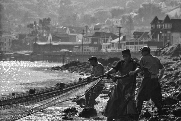 Herring fishermen in Sausalito.