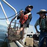 As Jon Hubbard, left, pulls out a near-empty dredge sample of clams, Norman Johns, a water resources scientist with the National Wildlife Federation, takes a look during a survey off the coast of Baytown.