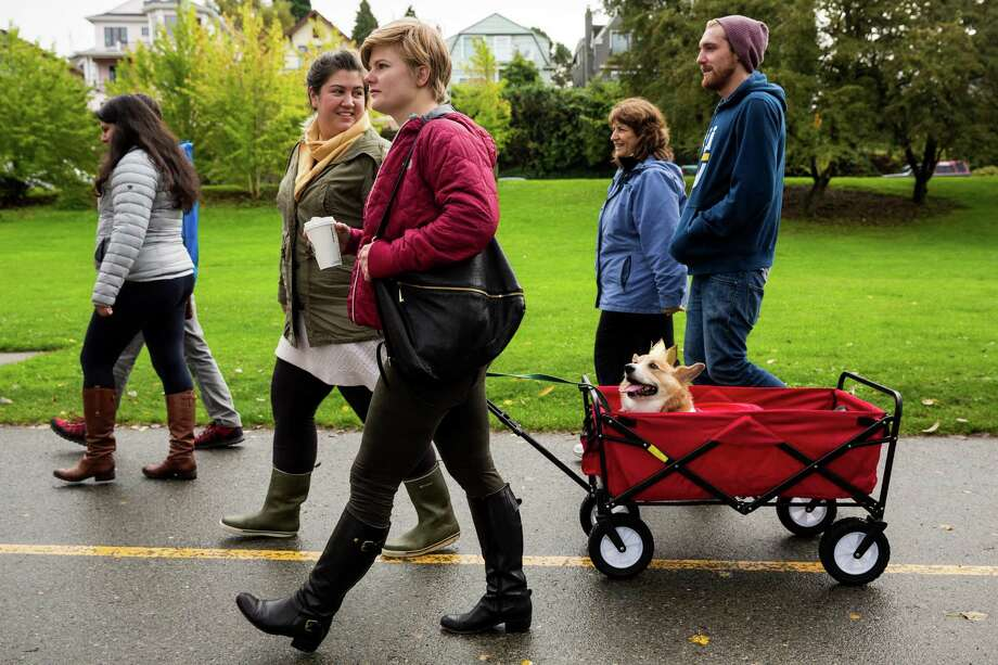 Between the traffic and the crumbly roads, walking might be the preferred mode of transit in Seattle. But not all Seattle neighborhoods are so saunter-able. Walk Score crunches numbers evaluating walkability around the world. Here's how Seattle's neighborhoods stack up according to Walk Score.  Photo: JORDAN STEAD, SEATTLEPI.COM / SEATTLEPI.COM
