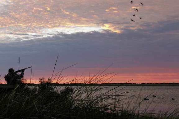 Duck and goose seasons dawn Nov. 1 in most of Texas, with the state's 100,000-plus waterfowlers facing a duck population higher than in more than a half-century, habitat conditions improved by summer rain and a migration that appears behind schedule.