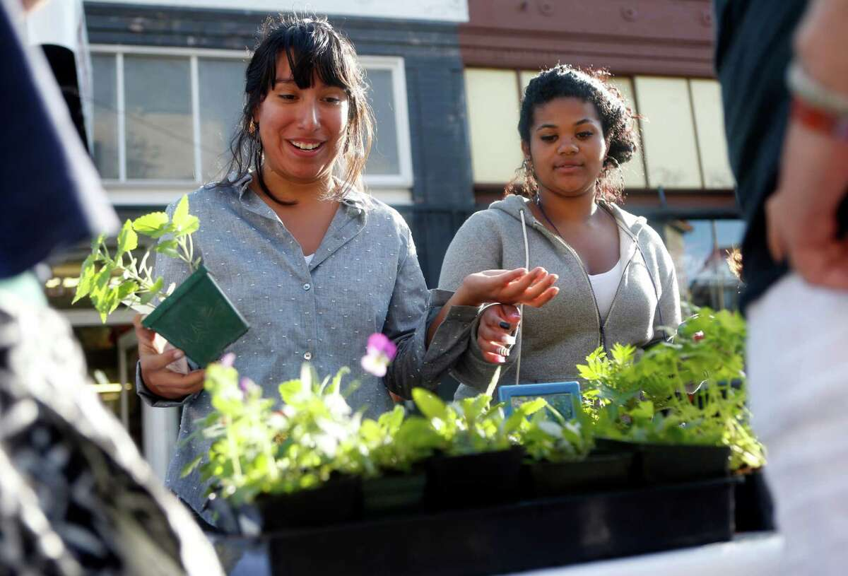 Ileana Mar (left) of Urban Sprouts and Carmen Perez, a sophomore at June Jordan School for Equity, sell plants at a farmers' market on 22nd Street in S.F.