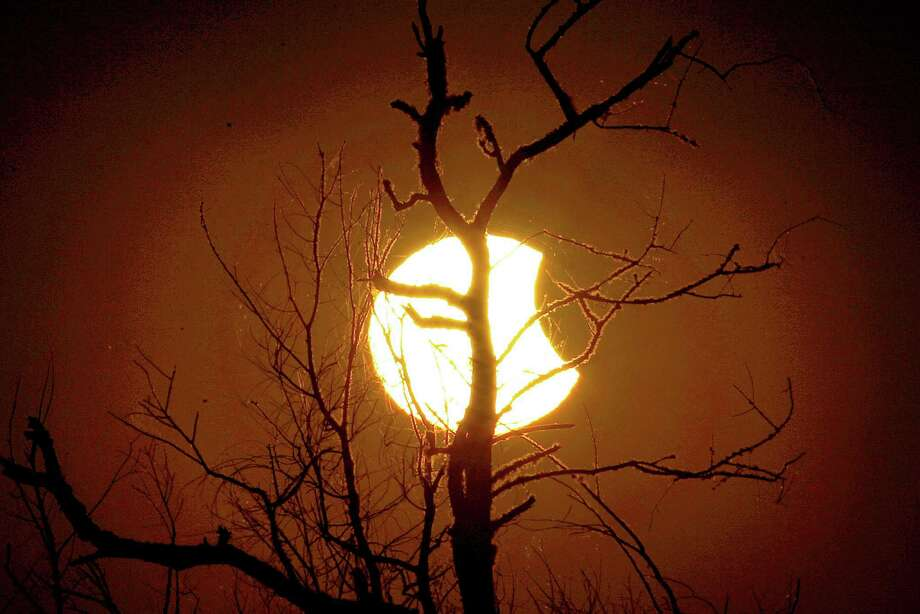 Tree branches are silhouetted against the sun during a partial eclipse as seen from Paynes Prairie Thursday, Oct. 23, 2014, in Gainesville, Fla. (AP Photo/The Gainesville Sun, Matt Stamey) ORG XMIT: FLGAI103 Photo: Matt Stamey, AP / The Gainesville Sun