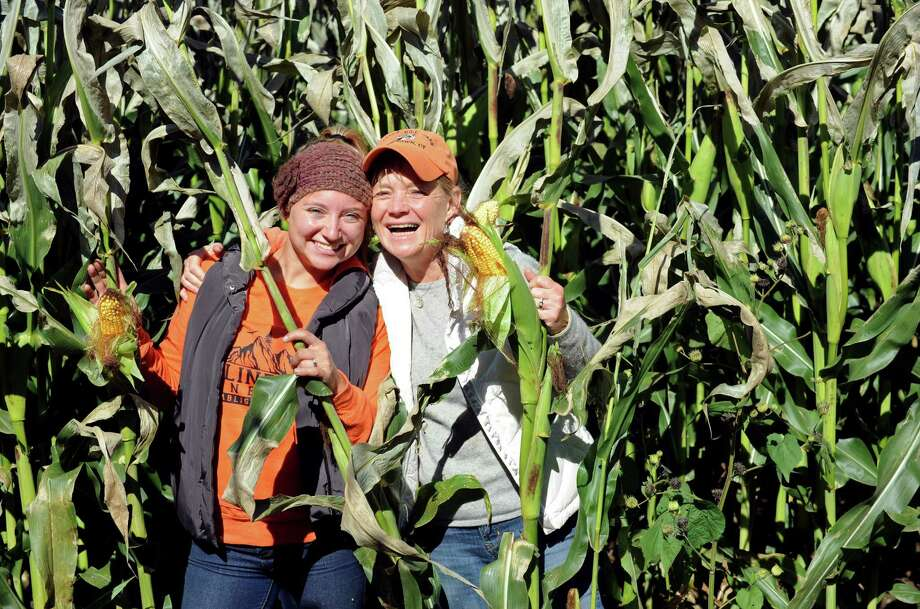 Click through the slideshow for a look at corn mazes to visit across Connecticut this fall. Photo: Cathy Zuraw / The News-Times