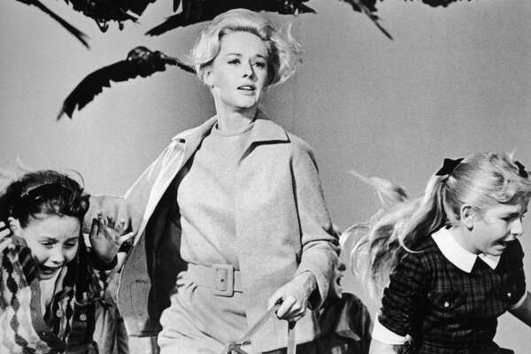 No. 10: 'THE BIRDS.'  What menace threatens Bodega Bay in this Hitchcock classic? Why, it's flock of seaguls and a   (ahem) murder of crows. Spoiler: Tippi Hedren survives, Suzanne Pleshette wishes she had worn   safety glasses. (Photo by Universal Studios/Getty Images)