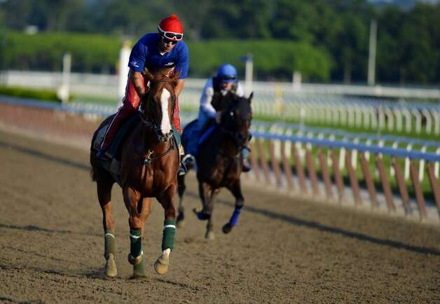 California Chrome works at out at Belmont on Tuesday. (Skip Dickstein / Times Union)