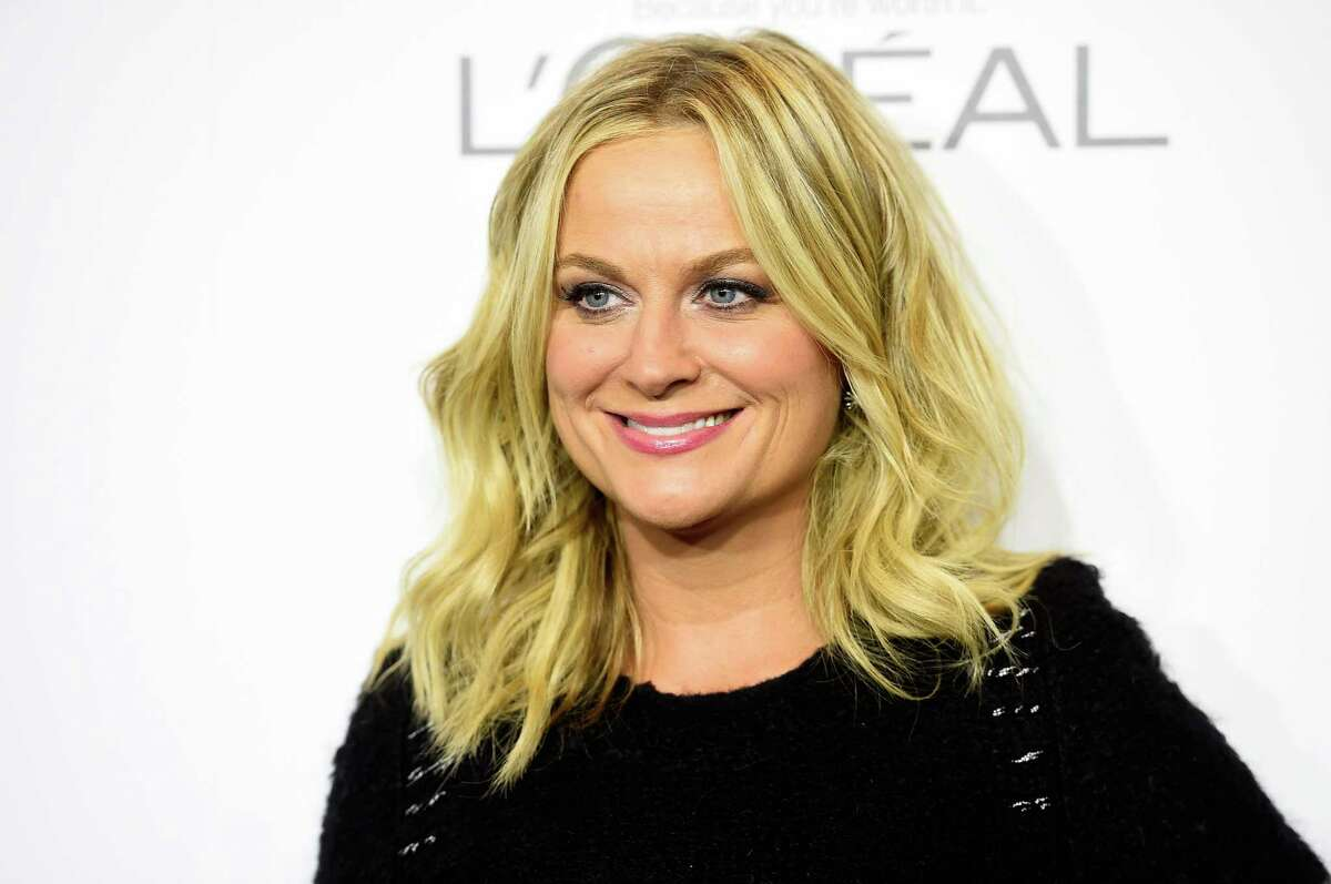 Amy Poehler would play...