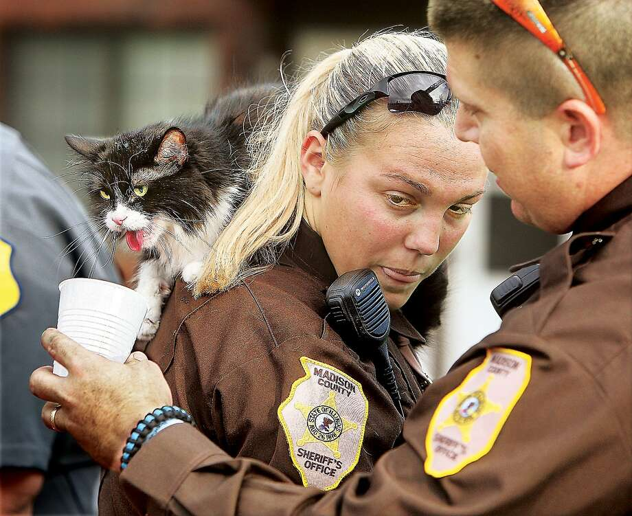 A little R&R (rescue and refreshments): Madison County, Ill., Deputy Sheriff David Saffel offers water to one of the seven cats rescued from an apartment fire in in Godfrey, Ill., as it sits panting on the shoulder of Deputy Brianna Markel. Police and firefighters also rescued a caged dog from one of the apartments. Photo: John Badman, Associated Press