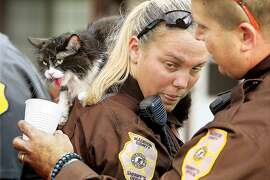 Madison County, Ill., Deputy Sheriff David Saffell, right, offers water to one of the seven cats rescued from the blaze at the Woodbury Manor Apartments in Godfrey, Ill., as it sits panting on the shoulder of Deputy Brianna Markel Tuesday Oct.28, 2014.  Police and firefighters also rescued a dog that was still in a cage from one of the apratments. No people were reported injured in the blaze which extensively damaged the complex.