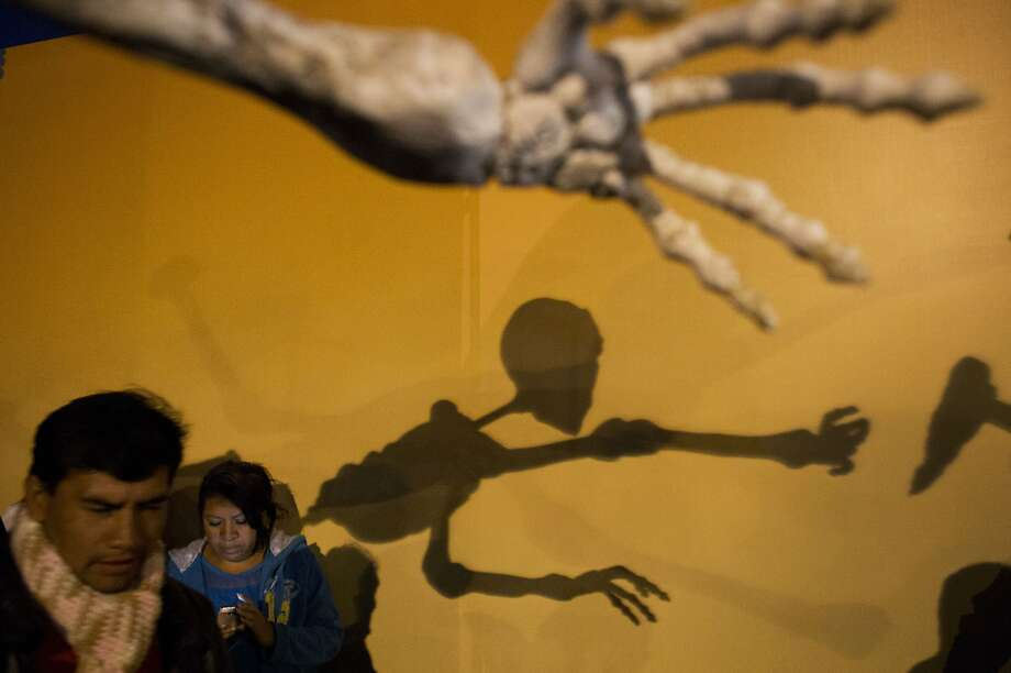 People visit a display of skeletal figures, erected as part of Day of the Dead festivities in the Zocalo, in Mexico City, Friday, Oct. 31, 2014. The Day of the Dead holiday honors the dead as friends and families gather in cemeteries to decorate their loved ones' graves and hold vigil through the night on Nov. 1 and 2. (AP Photo/Rebecca Blackwell) Photo: Rebecca Blackwell, Associated Press