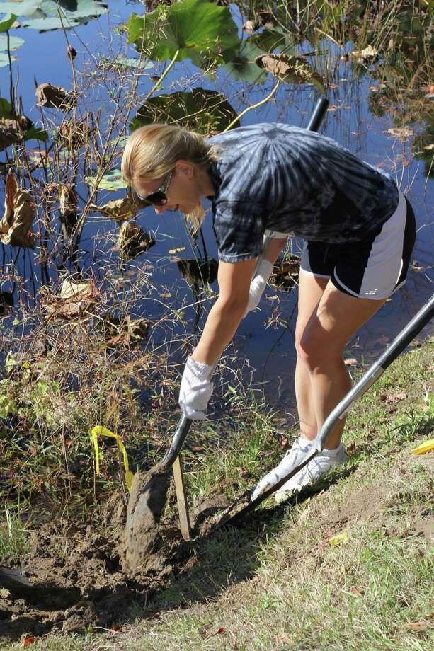 Dina Lewis participates in the tree planting at Rustic Oak Park in League City. Photo: Jimmy Loyd / freelance