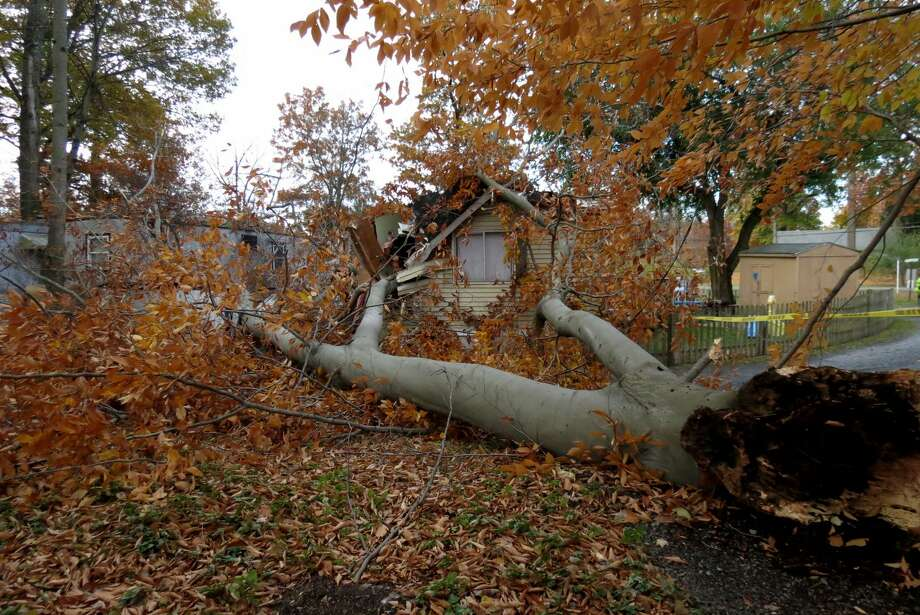 A tree went through the roof of a mobile home on Locust Drive in Selkirk on Nov. 2, 2014 as high winds hit the area. Two people were sleeping in a bedroom underneath the damage, and one person was transported to the hospital with back pain. (Photo by Thomas Heffernan Sr.) Photo: Picasa