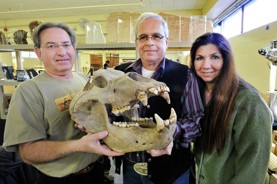 Mark Newman, left, Paleontologist at Hicksville Gregory Museum on Long Island, and his wife, Karen, at right, along with Ron Lupo, center, hold a prehistoric cave bear skull during the Gem, Mineral, Jewelry & Fossil show at the Eastern Greenwich Civic Center in Greenwich, Conn., on Sunday, Nov. 2, 2014. Photo: Jason Rearick / Stamford Advocate