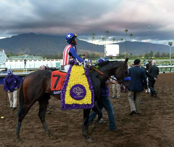 Bayern with jockey Martin Garcia aboard waits to enter the winner's circle after winning the Breeders' Cup Classic Saturday evening Nov. 1, 2014 at Santa Anita Race Track in Arcadia, California     (Skip Dickstein/Times Union) Photo: SKIP DICKSTEIN