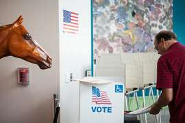 A statue for an upcoming exhibit on California Chrome looks on as precinct officer Doug Woodruff feeds completed ballots at the California Museum in Sacramento, California, November 4, 2014.