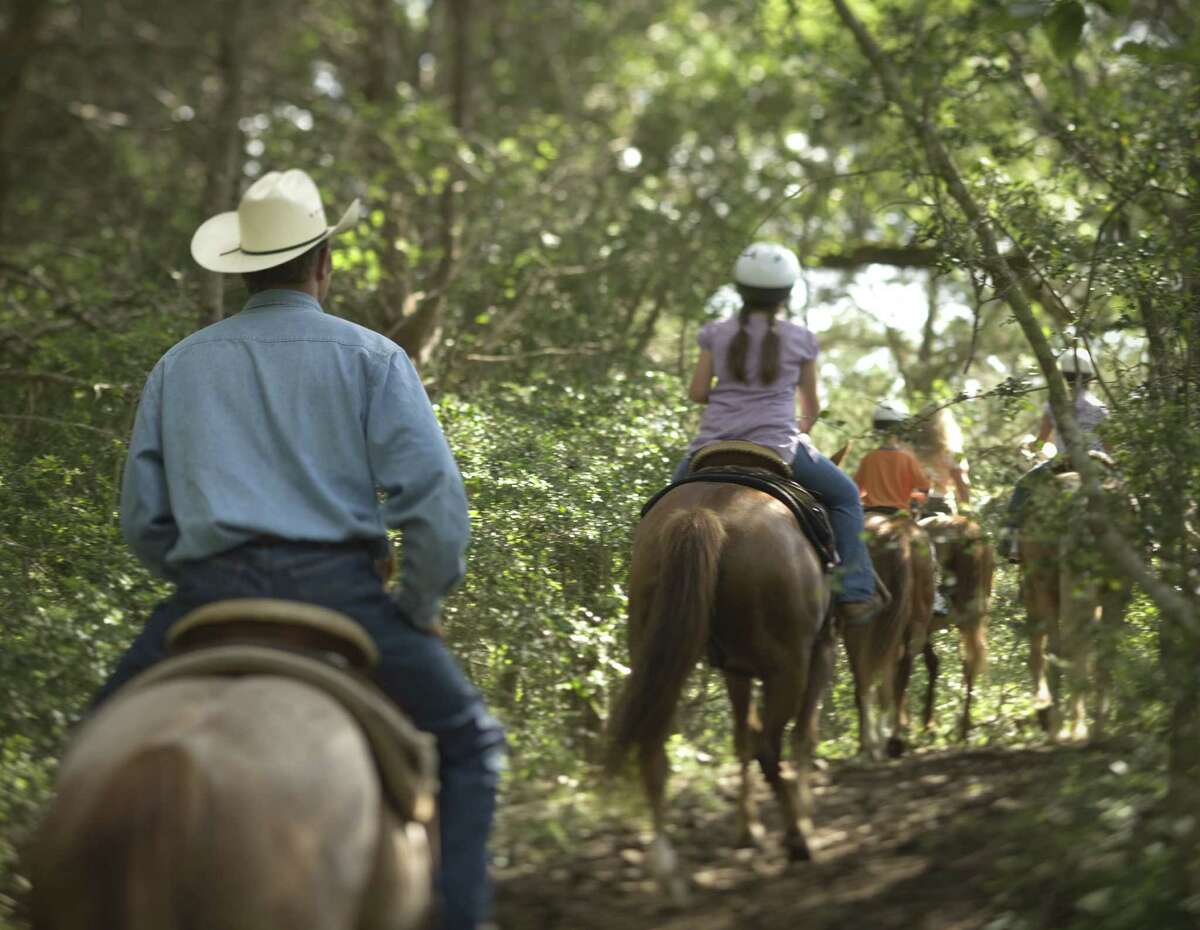 38. Bastrop Bastrop housesMcKinney Roughs Nature Park, which allows people to explore the Lost Pines area from horseback.
