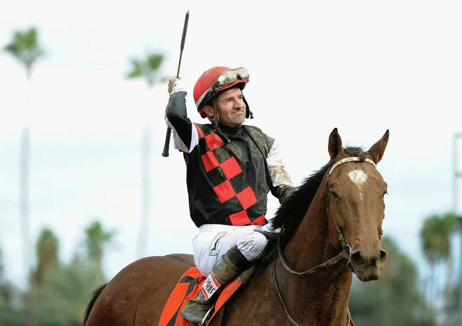 Jockey Kent Desormeaux celebrates atop Texas Red after winning the 2014 Sentient Jet Breeders' Cup Juvenile at Santa Anita Park on Nov. 1. Photo: Harry How / Harry How / Getty Images / 2014 Getty Images