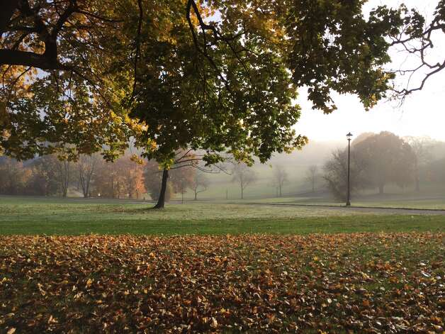 The fog just doesn't want to leave Albany?s Lincoln Park on this crisp fall morning late last month. (Hunter Raines)