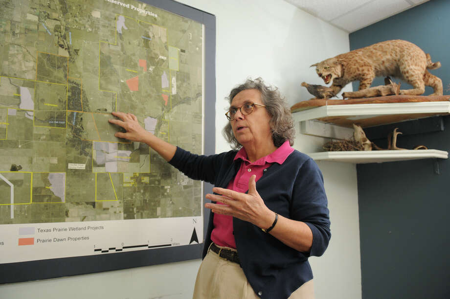 Mary Anne Piacentini, Executive Director of the Katy Prairie Conservancy, discusses the proposal of an electric line that may cross the prairie in Waller. Photo: Jerry Baker, Freelance