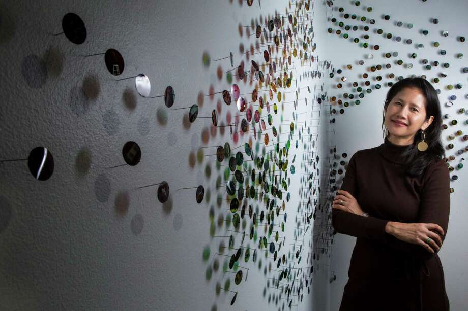"Bennie Flores Ansell's installation ""Migration Swarms"" consists of swarms from transparent 1-inch dots mimicking movement and flight.  Photo: Marie D. De Jesus, Staff / © 2014 Houston Chronicle"
