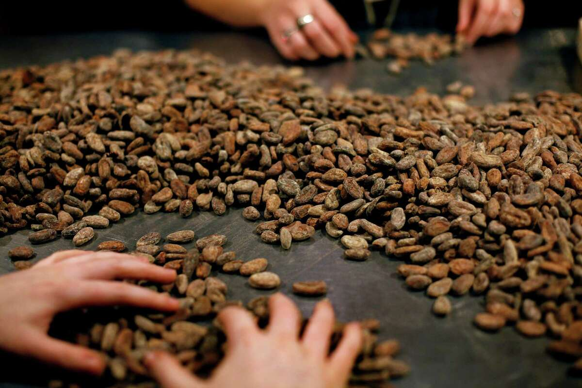 At Dandelion Chocolate in S.F. top, cocoa beans are sorted by hand.