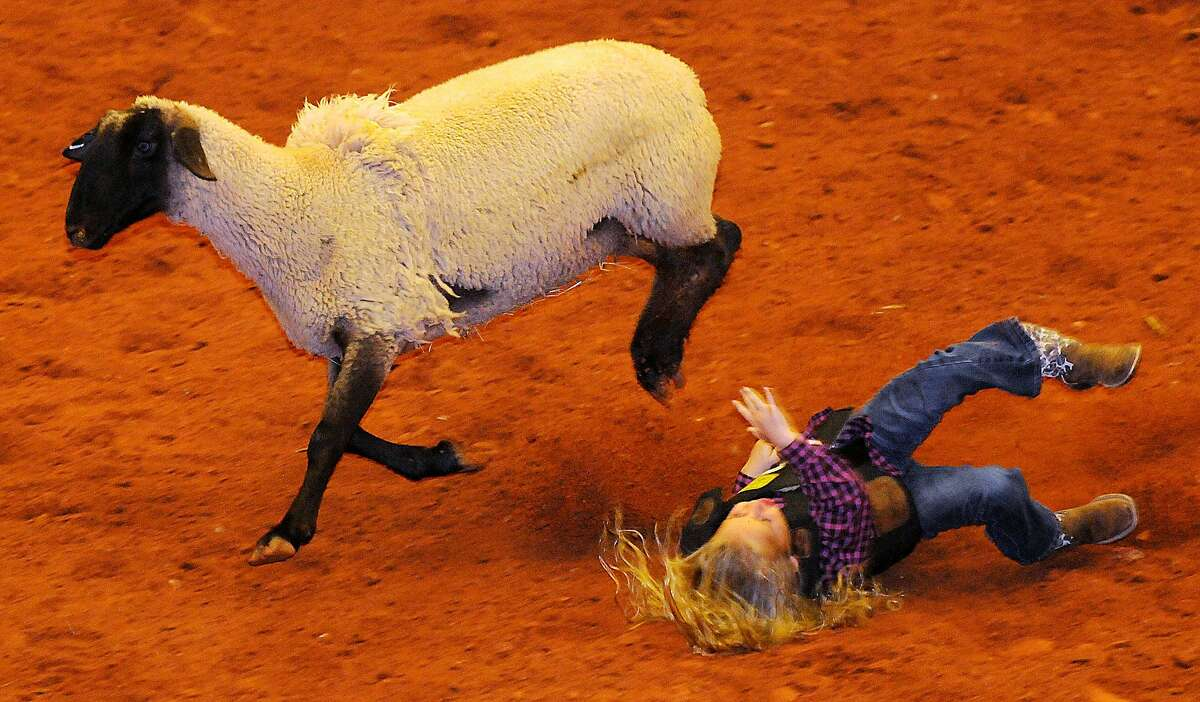 A young mutton buster bites the dust as her sheep sprints away during the Enid PBR Challenge rodeo at the Enid Event Center in Enid, Okla., Saturday, Nov. 8, 2014. (AP Photo/Enid News & Eagle, Bonnie Vculek)