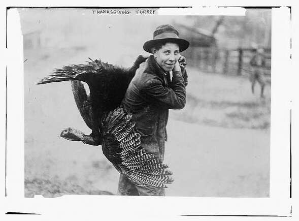 Between 1910 and 1915: A Thanksgiving turkey. (Bain News Service)