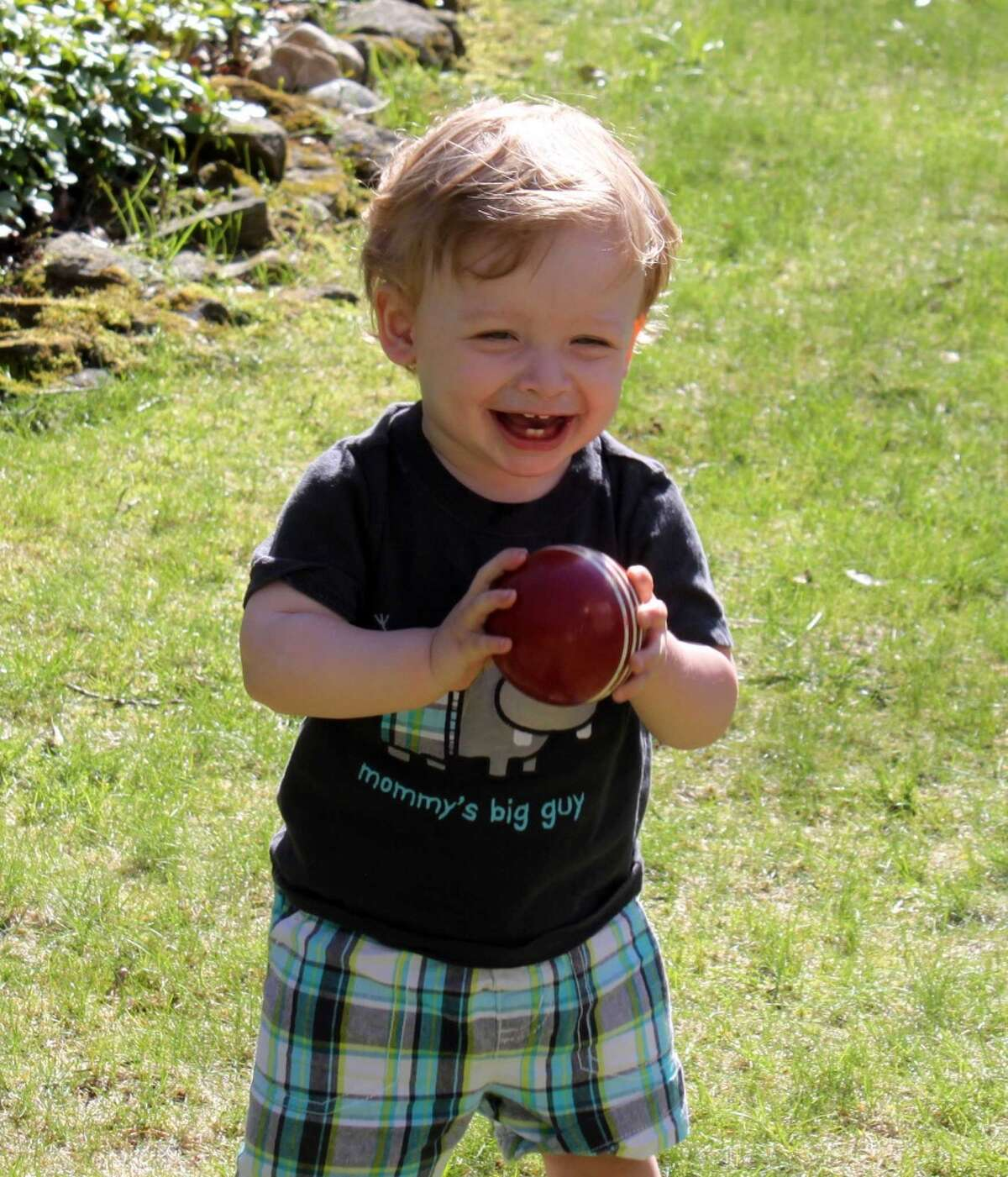 """Benjamin Seitz, the 15-month-old son of Kyle and Lindsey Rogers-Seitz of Ridgefield, died July 7 after his father left him in the car for what police called """"an extended period of time."""""""