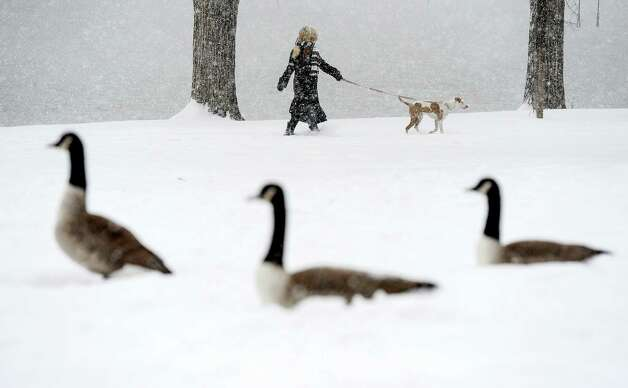 A woman walks her dog next to Prospect Lake as snow falls in Colorado Springs, Colo., Tuesday, Nov. 11, 2014. Temperatures are expected to remain in the 20s or below until Friday. (AP Photo/The Colorado Springs Gazette, Michael Ciaglo) MAGS OUT ORG XMIT: COCOL105 Photo: Michael Ciaglo / The Gazette