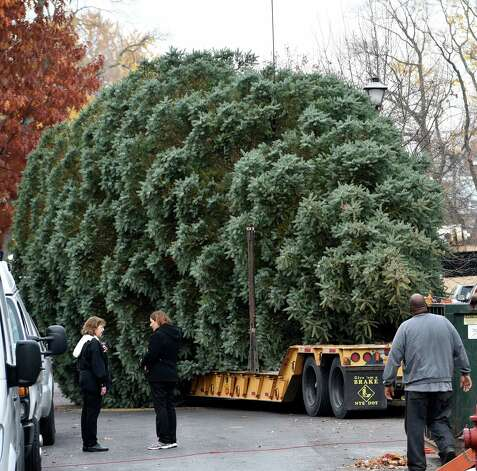 The donated tree from 834 Woodland Avenue leaves on a flatbed truck Wednesday morning Nov. 12, 2014 from Schenectady, N.Y.     (Skip Dickstein/Times Union) Photo: SKIP DICKSTEIN / 00029428A