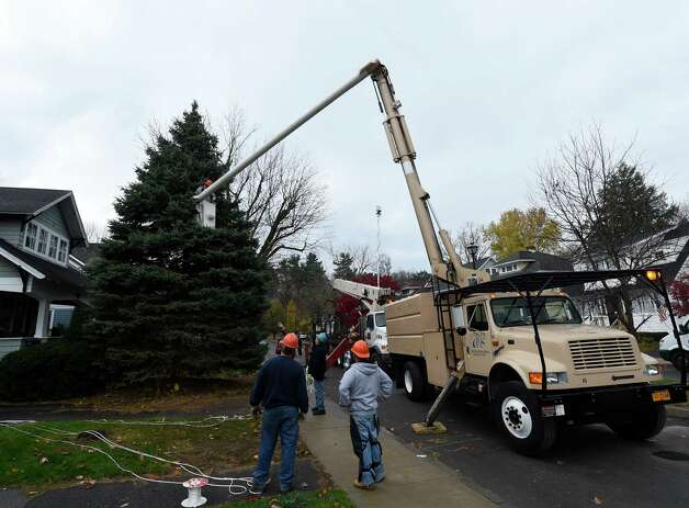 State Office of General Services grounds crew members remove a tree from 834 Woodland Ave. on Nov. 12, 2014 in Schenectady, N.Y.    The tree will become the state Christmas tree.   (Skip Dickstein/Times Union) Photo: SKIP DICKSTEIN / 00029428A