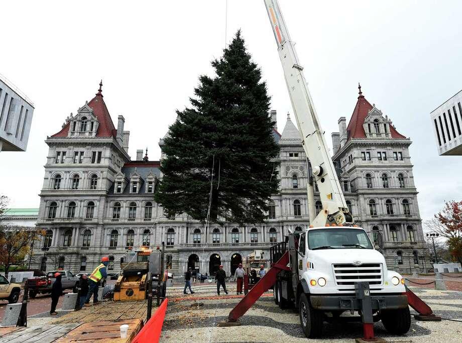 Empire state plaza holiday tree houston chronicle for Plaza motors albany ny