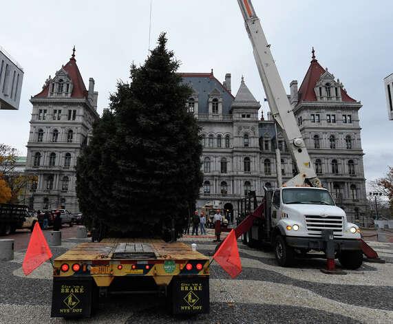 Ground crew members from the Office of General Services place the tree donated by the VanAcken family of Schenectady on the mosaic at the north end of the Empire State Plaza Wednesday, Nov. 12, 2014, in Albany, N.Y. The tree will become the State Christmas tree and reside on the Empire State Plaza with its official lighting on December 7 at 5:15 p.m. (Skip Dickstein/Times Union) Photo: SKIP DICKSTEIN, ALBANY TIMES UNION / 00029428A