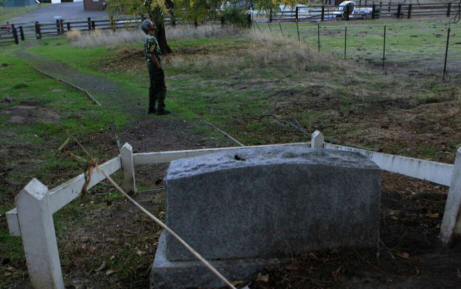 Vince Lee of San Francisco glances up at some trees after checking out the grave of Blemie, the dog, at the Eugene O'Neill National Historic Site in Danville in early November. Photo: Daniel E. Porter / The Chronicle / ONLINE_YES