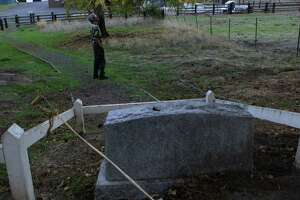 Vince Lee of San Francisco glances up at some trees after checking out the grave of Blemie, the dog, at the Eugene O'Neill National Historic Site in Danville in early November.