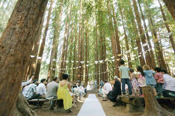 The couple's 150 wedding guests witnessed the union in the serenity of the redwood grove. The grove was festooned with white, silver, and gold paper pennants, hand-cut by the bride and groom and hung from the trees with the help of some tall friends.