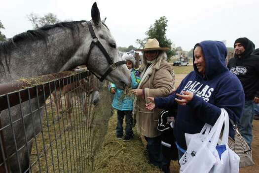Virginia DeLira (right) marvels as feeds hay to a horse for the first time in her life during Farm Day at Mission San Juan on Saturday, Nov. 15, 2014. Farm Day featured various activities for guests to learn about how agriculture at the mission took root. Docents and National Park Service personnel showed various aspects of life at the mission that involved farming, raising animals and the development of an irrigation system. One of the highlights was a tour of the working acequia that is currently used to irrigate land around the mission as officials hope to grow and harvest crops on the land. Photo: Kin Man Hui, San Antonio Express-News / ©2014 San Antonio Express-News